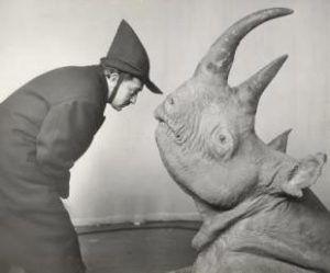 dali-the-rhinoceros-L-g1LsBo